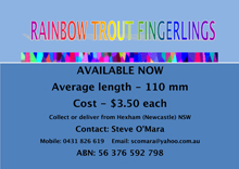 13.5.16Rainbowtroutad-in-colour-reduced