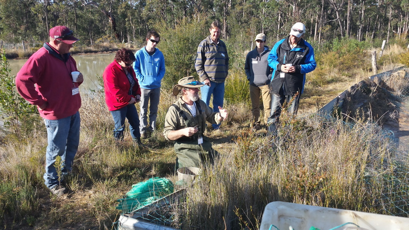 Rob McCormack discussing trap placement in yabby ponds