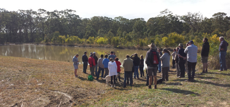 Rob McCormack discussing yabby farming around the ponds