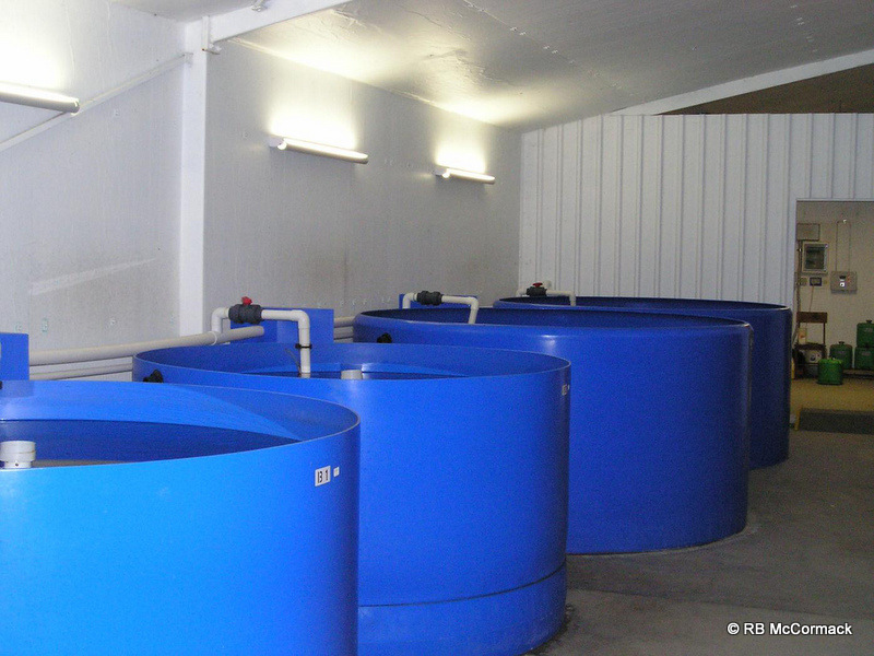 Second hand aquaculture system for sale