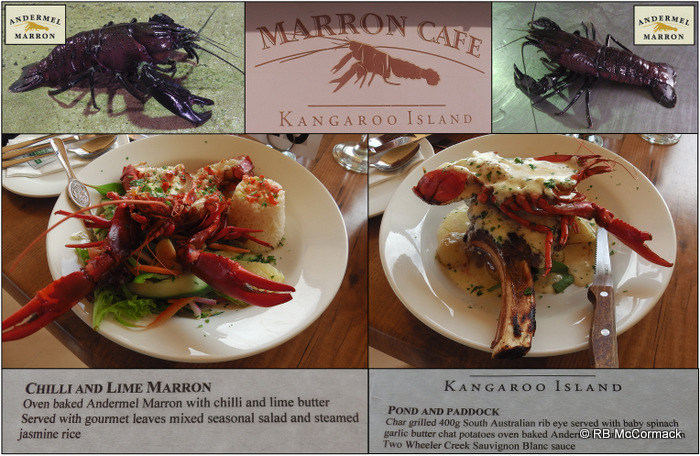 Andermel Marron Café and what we had for lunch