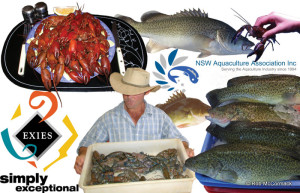 Griffith Yabby & Fish Field Day