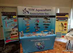 NSWAA Trade Display